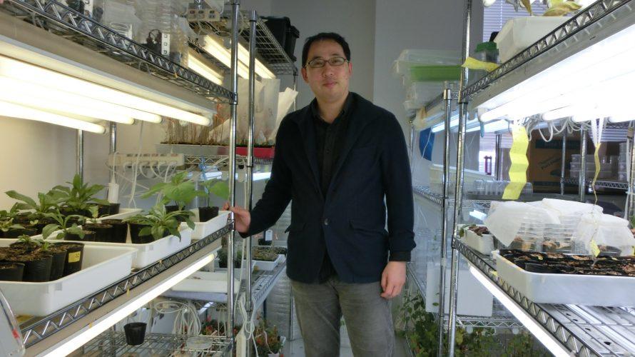 未来に向けた農業 カギ握る大学研究室 東京理科大学